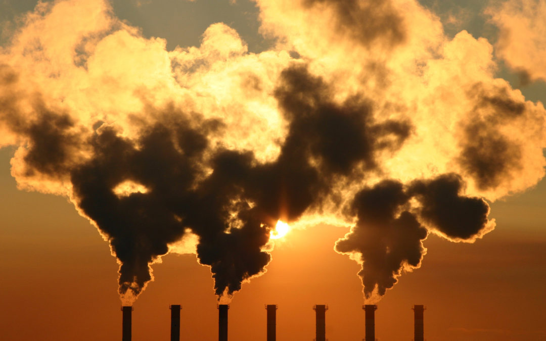 Which is Killing More People?  COVID-19 or The Climate?