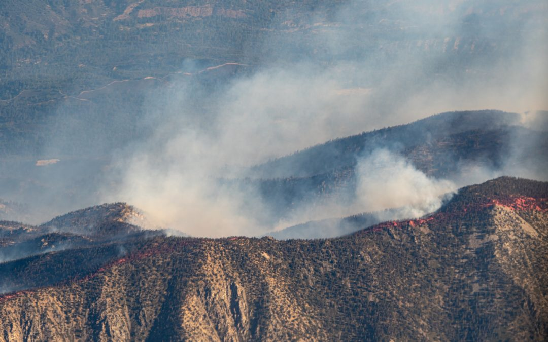 The Impacts of Wildfire Pollution