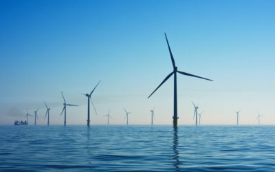 The Rise of Renewables